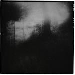 Pascal Hermans Fine Art 05