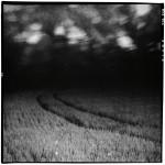 Pascal Hermans Fine Art 06